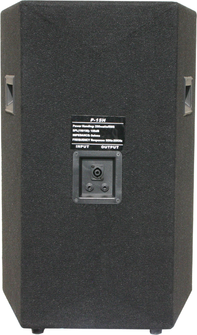 AWA P-15 speaker with one speakone and two XLR